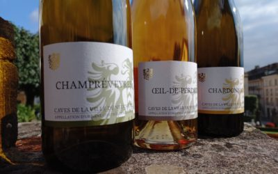 Cave ouverte samedi 9 octobre de 10h à 13h. 3 vins à -30%